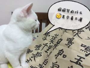 IMG_2214_副本.jpg