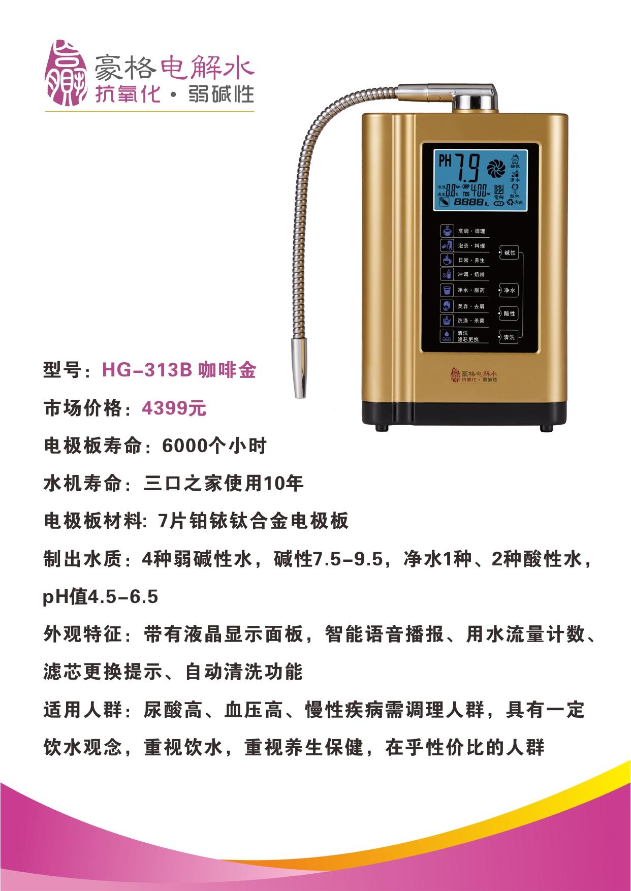 HG-313B 咖啡金.jpg