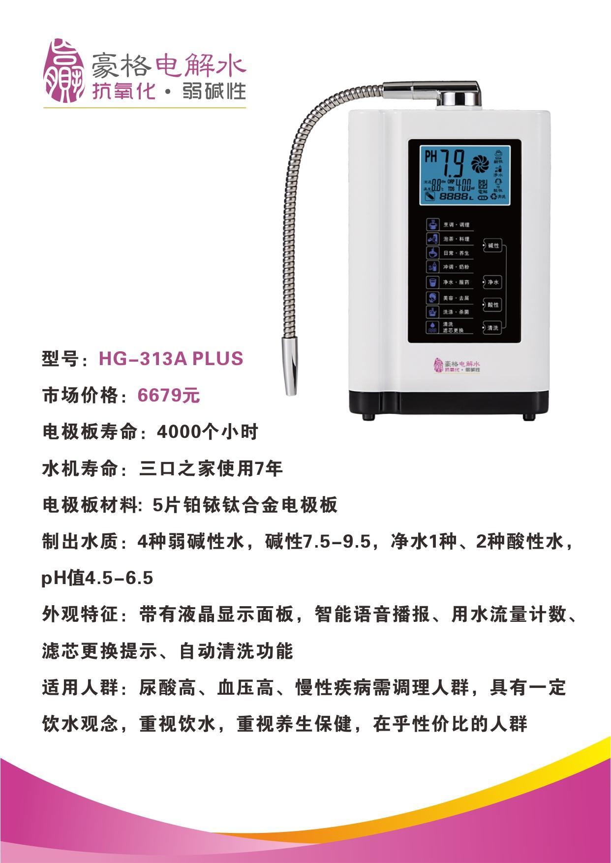 HG-313A PLUS.jpg