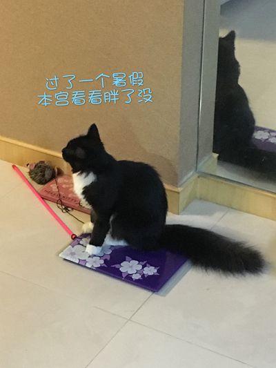 IMG_4734_副本.jpg