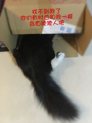 IMG_4737_副本.jpg
