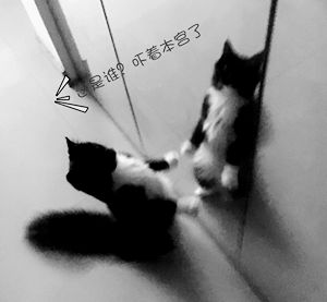 IMG_5823_副本.jpg